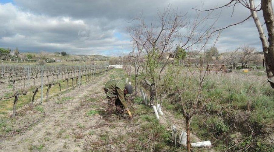 """La Junta se adelanta a los posibles efectos de la sequía trabajando """"en interlocución permanente"""" con el sector"""