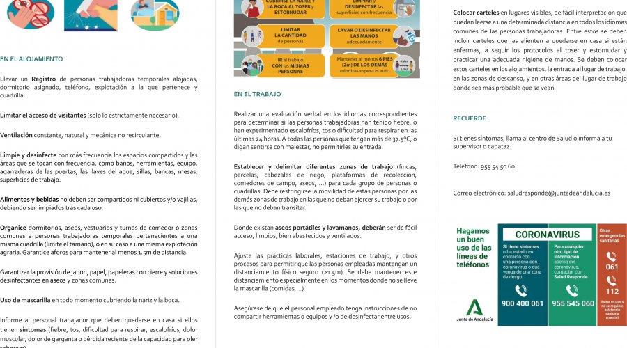 Un folleto informativo para prevenir el contagio de covid-19 destinado a trabajadores y empresarios agrícolas