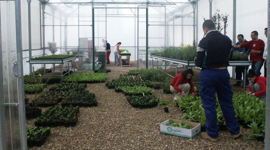 La Diputación becará a siete titulados en FP Agraria para su inserción laboral en empresas cordobesas